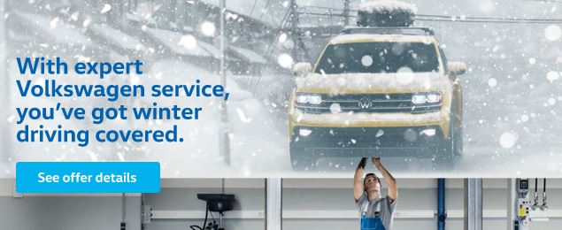 Winter Service Offer - EN